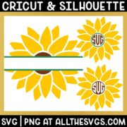 free simple sunflower circle monogram and split monogram svg png