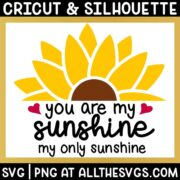 Sunflower You are My Sunshine Quote SVG & PNG Craft Cut File